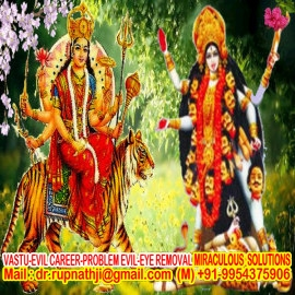 black magic specialist astrologer baba ji