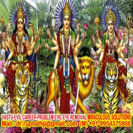 black magic specialist astrologer tantric babaji