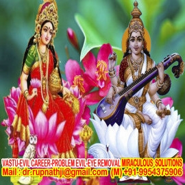 career solution call divine miraculous vak siddha maha tantrik baba rupnathji