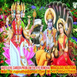 solve all your problems by worlds no 1 astrologer tantric