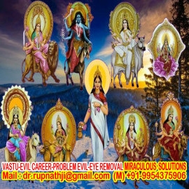 worlds no 1 best famous astrologer tantrik